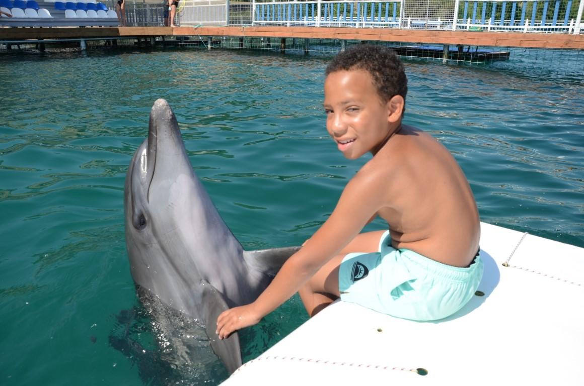 Bodrum Dolphin Park Turu