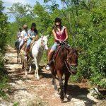 Bodrum At Safari Turu